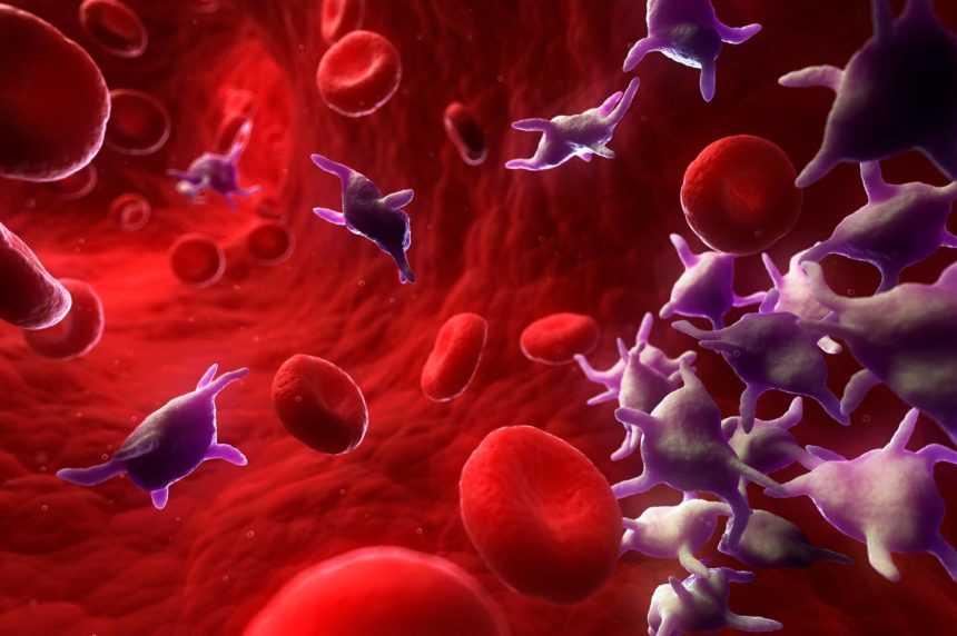 Platelet aggregation and platelet activation were both independently associated with bleeding risk.