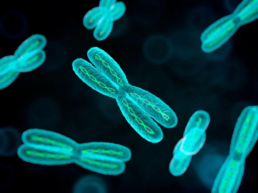 Computer illustration of chromosomes.